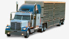 Repuestos Western Star Low Max